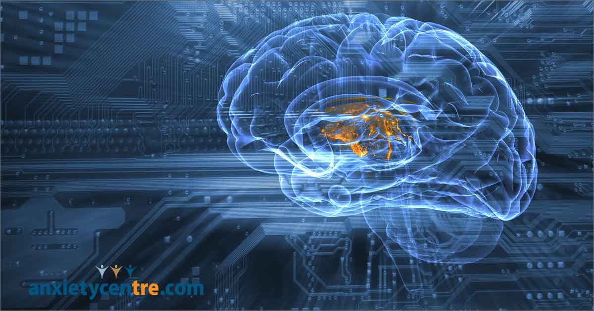 Mental Training Changes Brain Structure And Reduces Social Stress