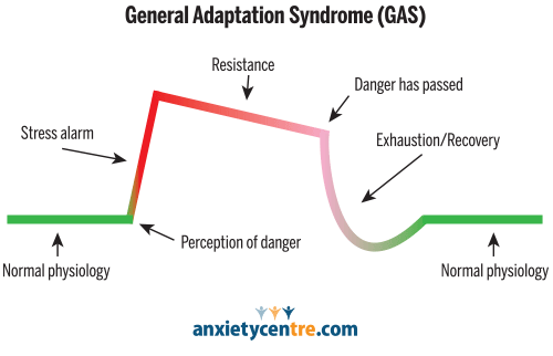 Adaptation Syndrome (GAS)