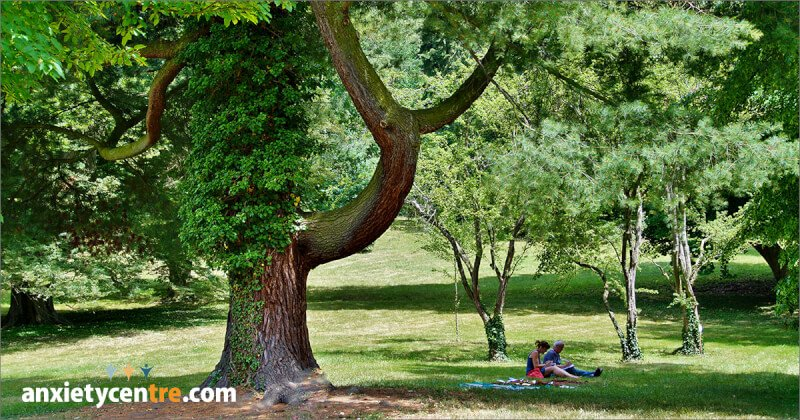 20 – 30 Minutes In Nature Reduces Anxiety, Depression, and Stress