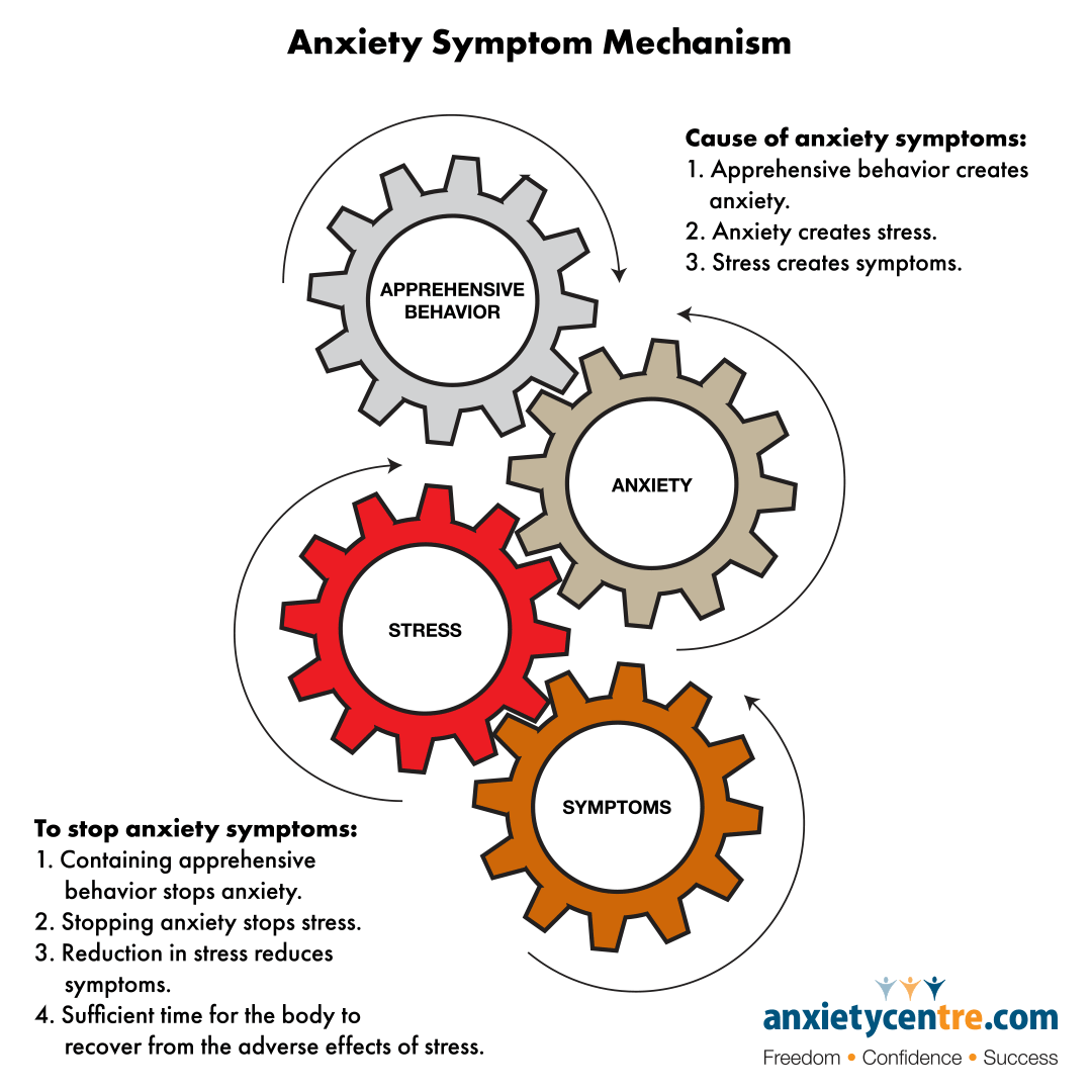 anxiety stress symptom mechanism image