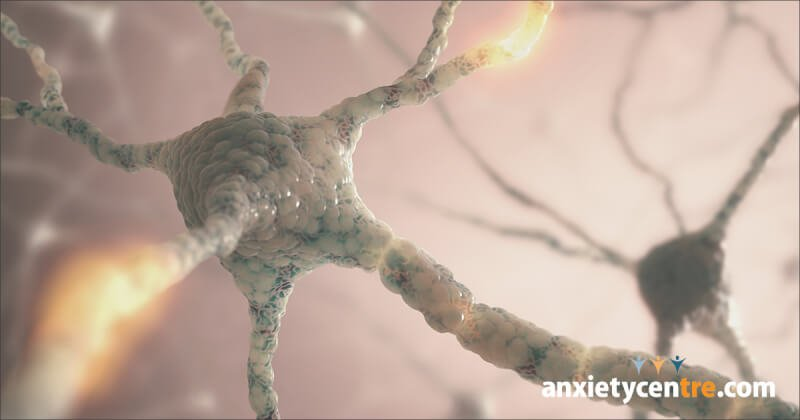 chemical imbalance theory false for anxiety disorder
