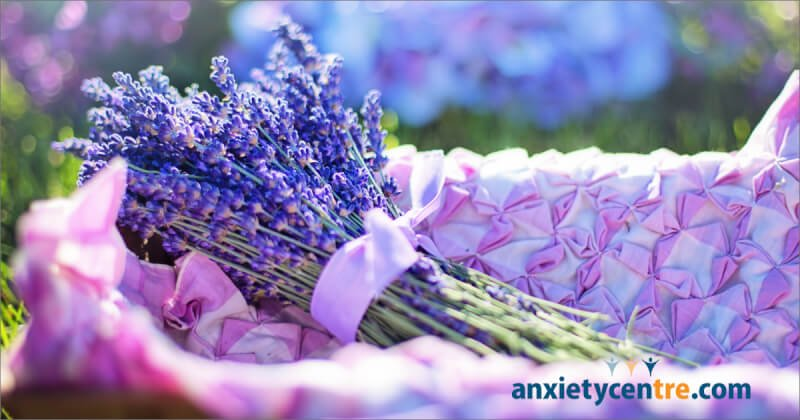 The Smell Of Lavender Is Relaxing