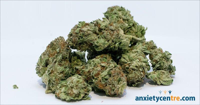 Marijuana Use Increases Risk Of Depression And Suicidal Behavior