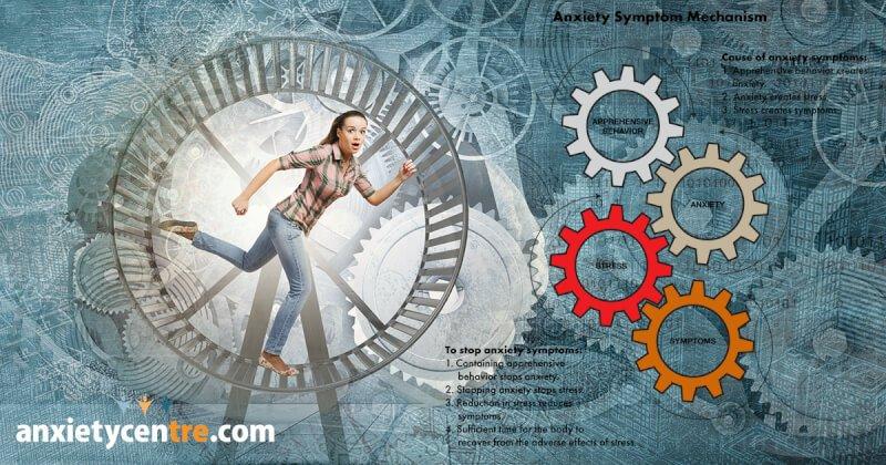 underlying factors that cause apprehensive behavior