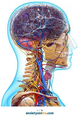 head brain zaps anxiety symptoms 2
