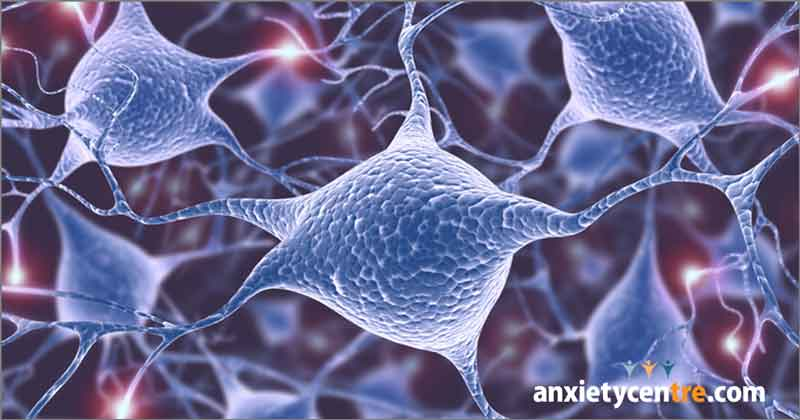 biological problem with the brain